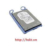 Ô cứng IBM 500GB 7200 RPM 3.5