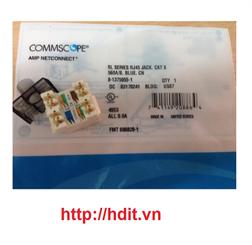 Nhân mạng AMP/ COMMSCOPE Cat6 Modular Jack, Unshielded (1375055-1)